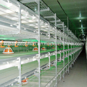 High Quality Chicken Cage Poultry Equipment for Broiler pictures & photos