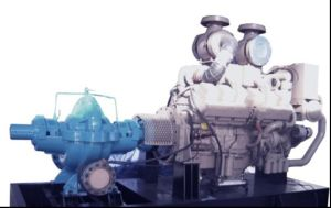 Top Quality and Brand New Cummins/Deutz/Lovol/Iveco/ Water Pump Engine pictures & photos