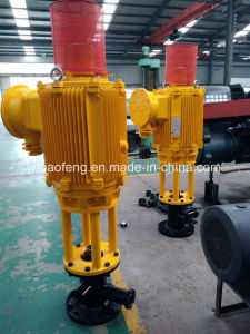 Petroleum Downhole Screw Pump PC Pump 50HP Direct Ground Driving Device pictures & photos
