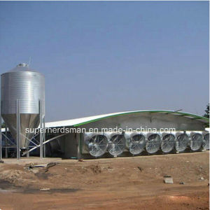 Top Quality Chicken Shed Construction with Steel Structure pictures & photos