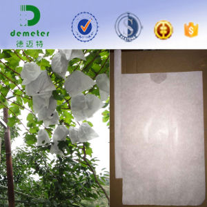 Peru Hotsale Water Resistant White Paper Fruit Protective Grape Bag pictures & photos