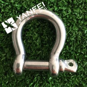 Stainless Steel D Shackle with Screw Pin pictures & photos