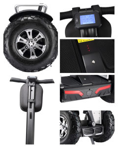 2017 Wholesale Golf Electric Scooter 4000W Electric Chariot for Sale pictures & photos