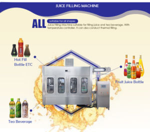 Automatic Apple Juice Hot Filling Machine with New Technique pictures & photos