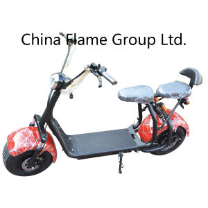 1000W Electric Touring Motorcycle with F/R Shocks pictures & photos