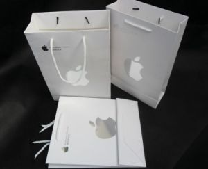 Shopping Packaging Paper Gift Bags for Gifts/Promotional (FLP-8949) pictures & photos