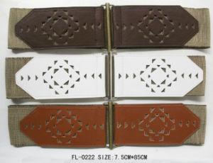 Perforated Belt of Elastic Fl-0222 pictures & photos