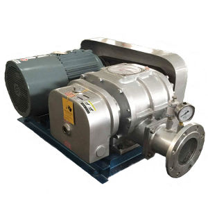 Roots Blower Manufacturer Offer Coal Gas Transmitting Blower pictures & photos