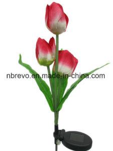 Solar Garden Rosestake Light (RS126) pictures & photos
