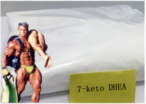 Weight Loss Muscle Growth Steroid 7-Keto-Dehydroepiandrosterone 7-Keto DHEA pictures & photos