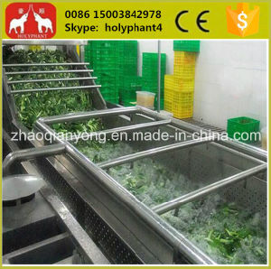 Stainless Steel Autometic Fruit and Vegetable Washing Machine pictures & photos