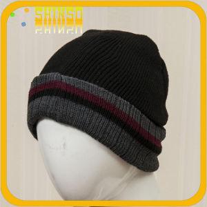 Fashion Sport Wool Warm Knitting Cap (BS025SST)