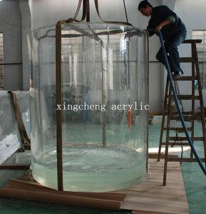 Customized Acrylic Cylindrical Freshwater Aquarium pictures & photos