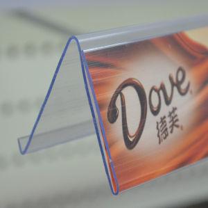 Plastic Extrusion Data Strip (DS-1049) pictures & photos
