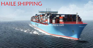 FCL Sea Freight From Guangzhou to Italy