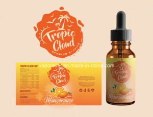 Flavor E Juice E Cig Vapor Juice with Fnt Nicotine Competitive Price E Juice/E Liquid with OEM Service pictures & photos