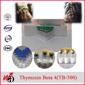 USP Grade Tb-500 Thymosin Beta 4 Thymosin Beta-4 pictures & photos
