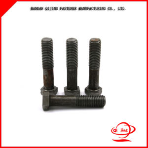 Black Surface Treatment Hex Bolts and Nuts 8.8 Grade pictures & photos