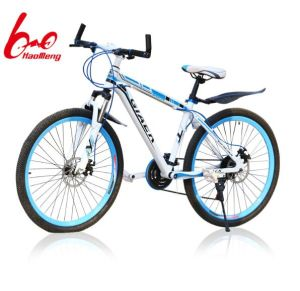 2017 New Style Mountain Bicycle for Adult pictures & photos