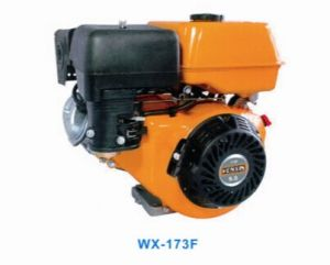 CE Standard Ohv 4-Stroke 242cc 8HP Cheep Gasoline Engine Wx-173f pictures & photos