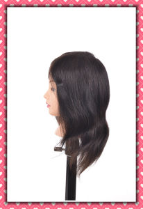 Different Faces Real Human Hair Training Head 14inches for Style Making pictures & photos
