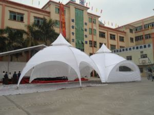 expo dome tent, spider tent, exhibition tent, beach tent pictures & photos