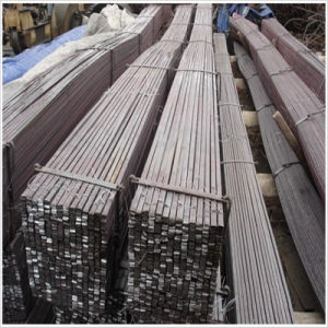 Flat Steel USA as Hoop Iron pictures & photos