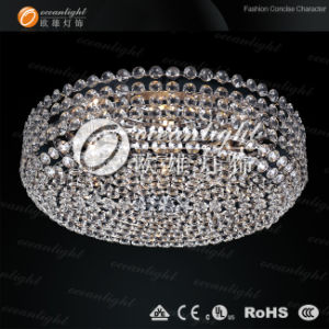 Ceiling Lighting (OM925) pictures & photos