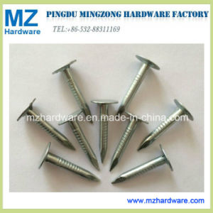Electro Galvanized Large Flat Head Clout Roofing Nail pictures & photos