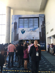 PVC Soft Clear Sheet Curtain pictures & photos