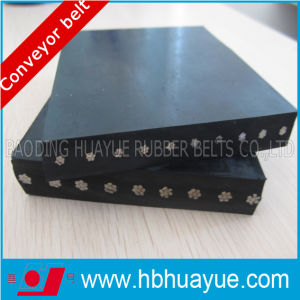 Mould/Cut Edged St Steel Cord Reinforced Conveyor Belt pictures & photos