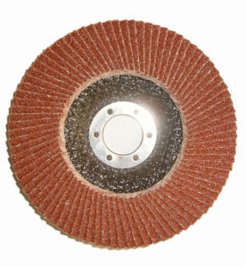 Abrasive Flap Disc for Deburring pictures & photos