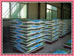 Animal Feed Additives DCP MDCP Mcp Monodicalcium Phosphate pictures & photos