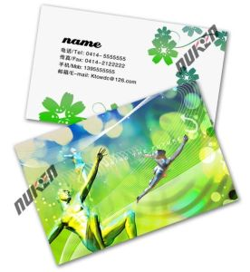Lenticular 3D Plastic Business Card pictures & photos