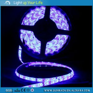 LED Strip Light Intdoor Use 3528 IP44 100m/Roll 12V Double Faced Adhesive Tape pictures & photos
