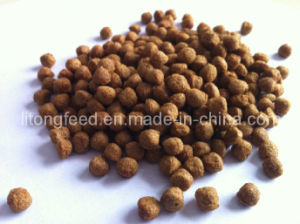 Rainbow Trout Feed Extruded for Animal Feed