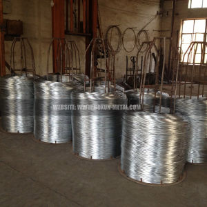 Electro Galvanized Wire pictures & photos