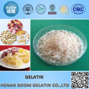 Factory Supply Food/Technical/Industrical Gelatum Granule pictures & photos