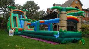 Funny Inflatable Wet and Dry Slide (TH-TC003) pictures & photos
