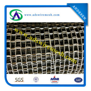 Wire Ring Belt (Chain Driven Wire Mesh) pictures & photos