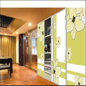 2015 New Design Colour Painting Sliding Door Wardrobe (FY4587) pictures & photos