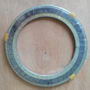 Hot Sell Flexible Graphite Reinforced Gaskets with The Best Quality pictures & photos