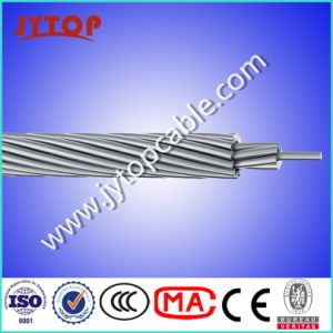 Bare Aluminum Conductor ACSR Dog, ACSR Rabbit Hare pictures & photos