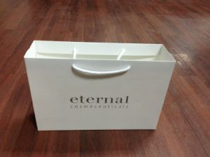 Box and Paper Bags for Shopping and E-Tailers pictures & photos