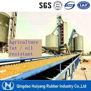 Mor Oil/Fat Resistant Rubber Conveyor Belt