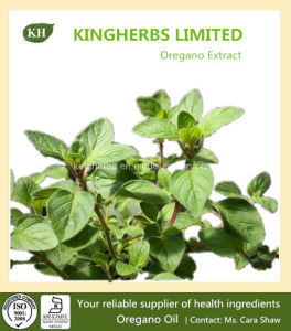 High Quality Oregano Extract (Oregano Oil) Bacteriostasis pictures & photos