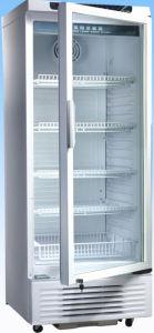 2 ~ 10 C Medical Vaccine Storage Refrigerator pictures & photos