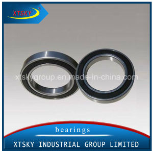 Xtsky Deep Groove Ball Bearing (6020ZZ 2RS) pictures & photos
