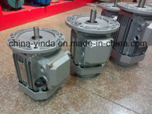 (1/4HP-10HP) High Efficiency Flange Mounted Tefc Three Phase AC Motor pictures & photos