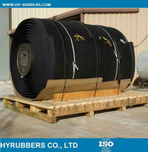 Conveyor Belts Alibaba Online Shopping pictures & photos